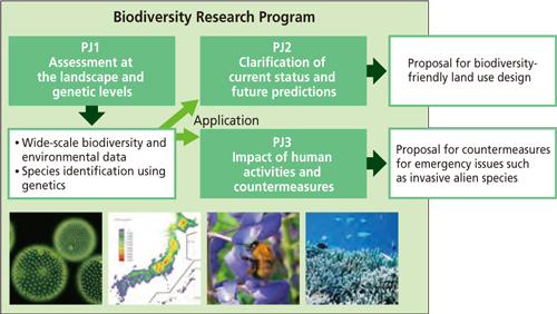 research papers on biodiversity View biodiversity research papers on academiaedu for free.