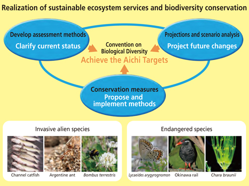 Realization sustainable ecosystem services and biodiversity conservation